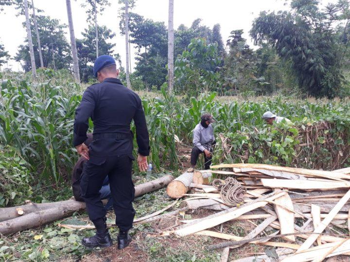 Dusun Binaan Sat Brimob Polda Jabar Memiliki Ketahanan Pangan Kuat di Tengah Pandemi Covid-19