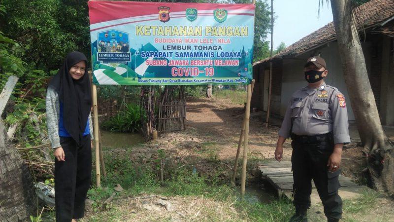 """Kapolsek Blananakan Monitoring Program """" Lembur Tohaga """" Sapapait Samamanis Lodaya """" di Dusun Tanjungsari Desa Blanakan."""